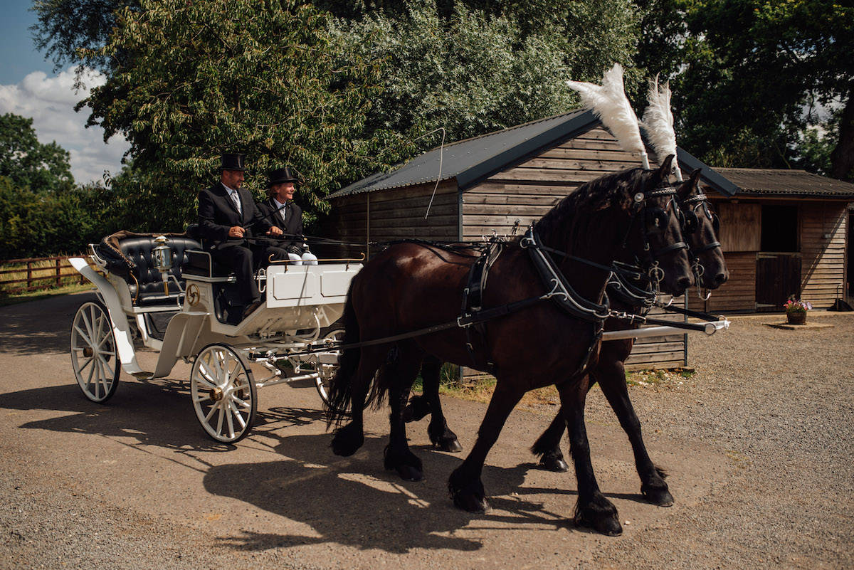 Horse and Carriage wedding transportation