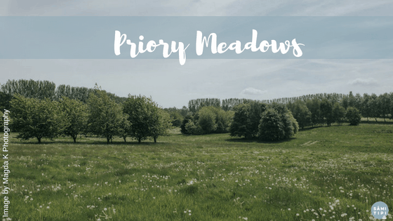 Introducing Priory Meadows