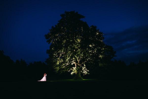 Bawdon Lodge Farm Oak Tree at Night